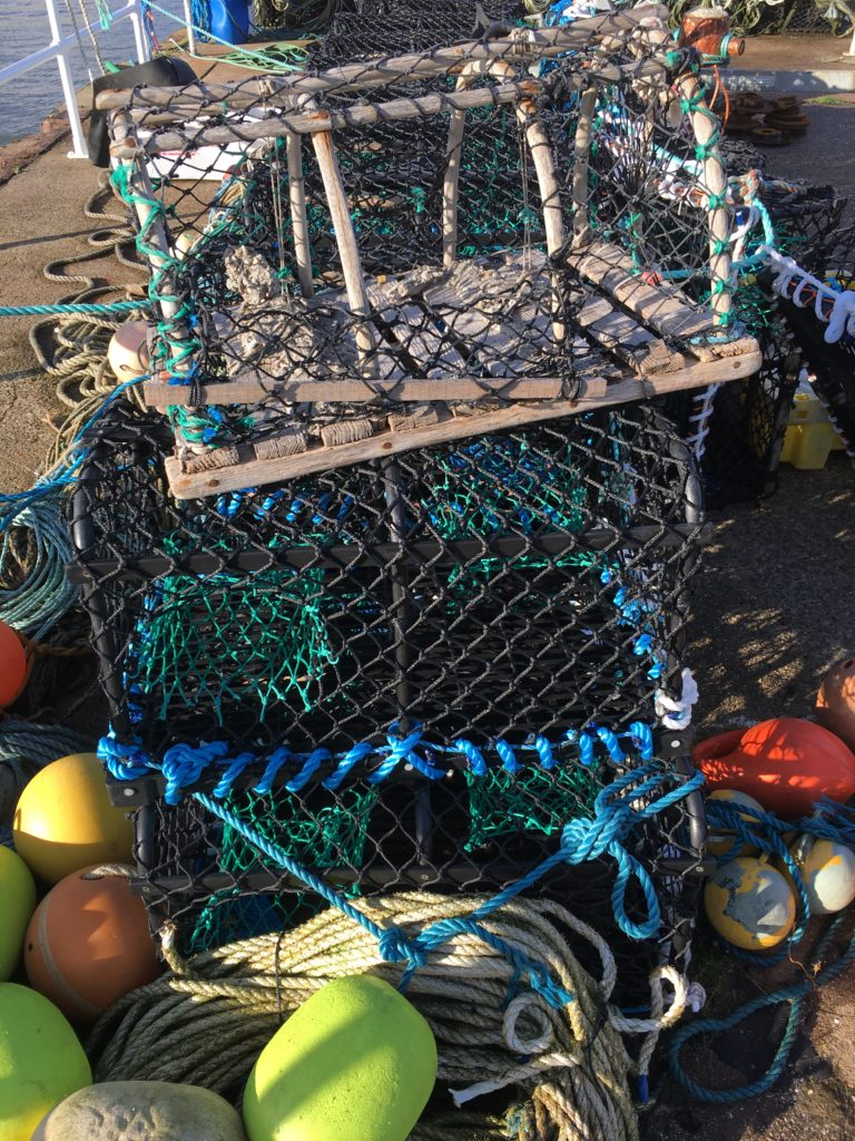 Close up photo of crab pots