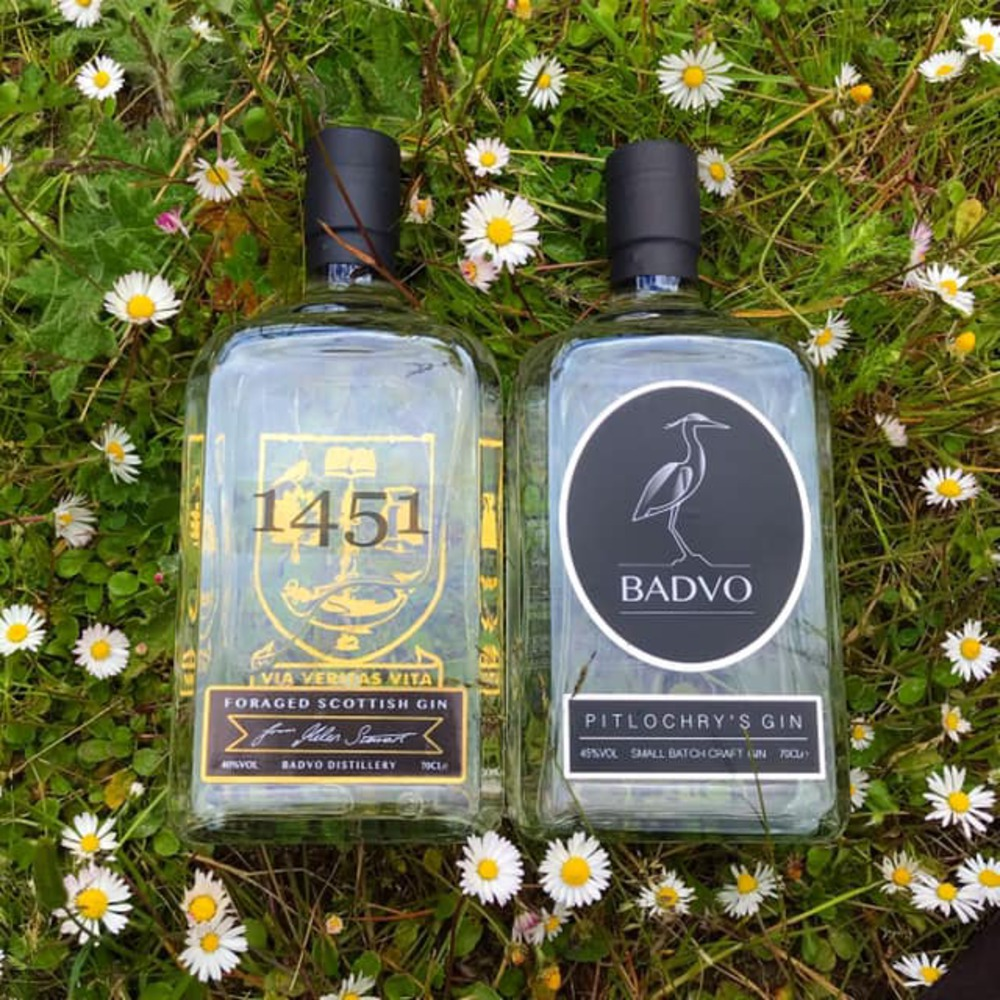 Image of 2 bottles of Badvo Gin
