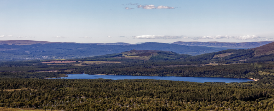 Loch Morlich from above